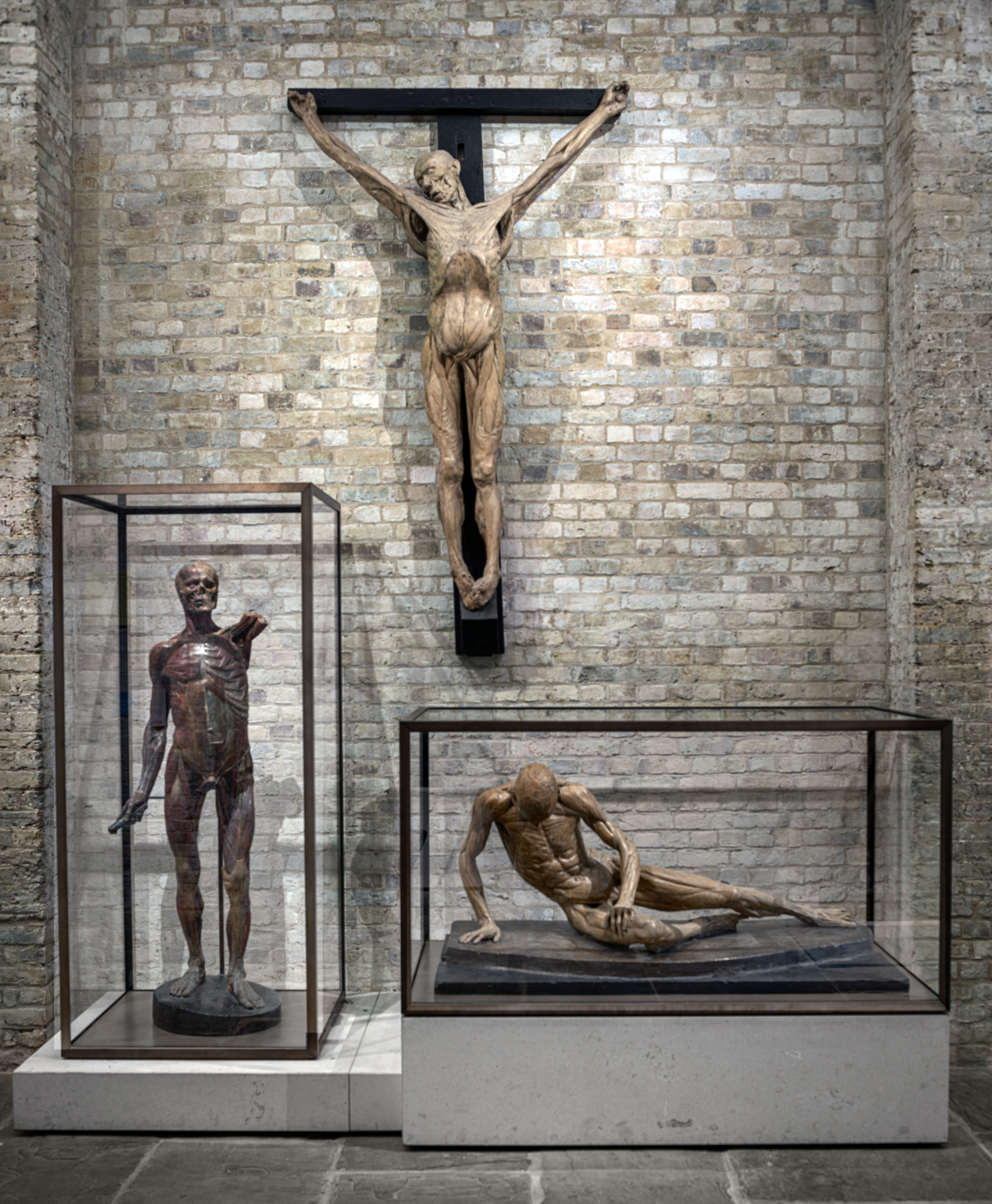 Exhibiting Anatomy: a curators' roundtable